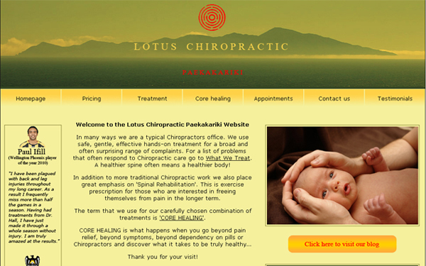 Patient management system for Lotus Chiropractic